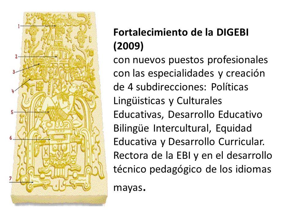Fortalecimiento de la DIGEBI (2009) con nuevos puestos profesionales con las especialidades y creación de 4 subdirecciones: Políticas Lingüisticas y Culturales Educativas, Desarrollo Educativo Bilingüe Intercultural, Equidad Educativa y Desarrollo Curricular.
