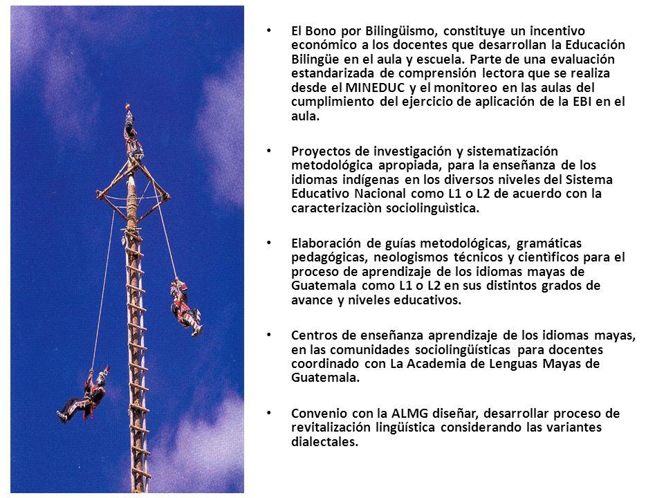 El Bono por Bilingüismo, constituye un incentivo económico a los docentes que desarrollan la Educación Bilingüe en el aula y escuela. Parte de una evaluación estandarizada de comprensión lectora que se realiza desde el MINEDUC y el monitoreo en las aulas del cumplimiento del ejercicio de aplicación de la EBI en el aula.