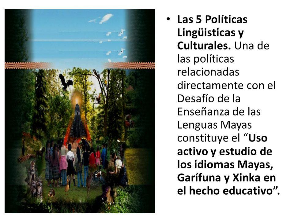Las 5 Políticas Lingüisticas y Culturales