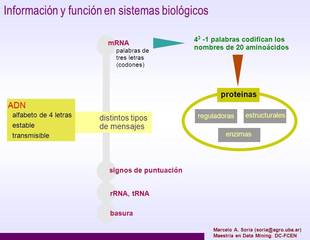 Información y función en sistemas biológicos