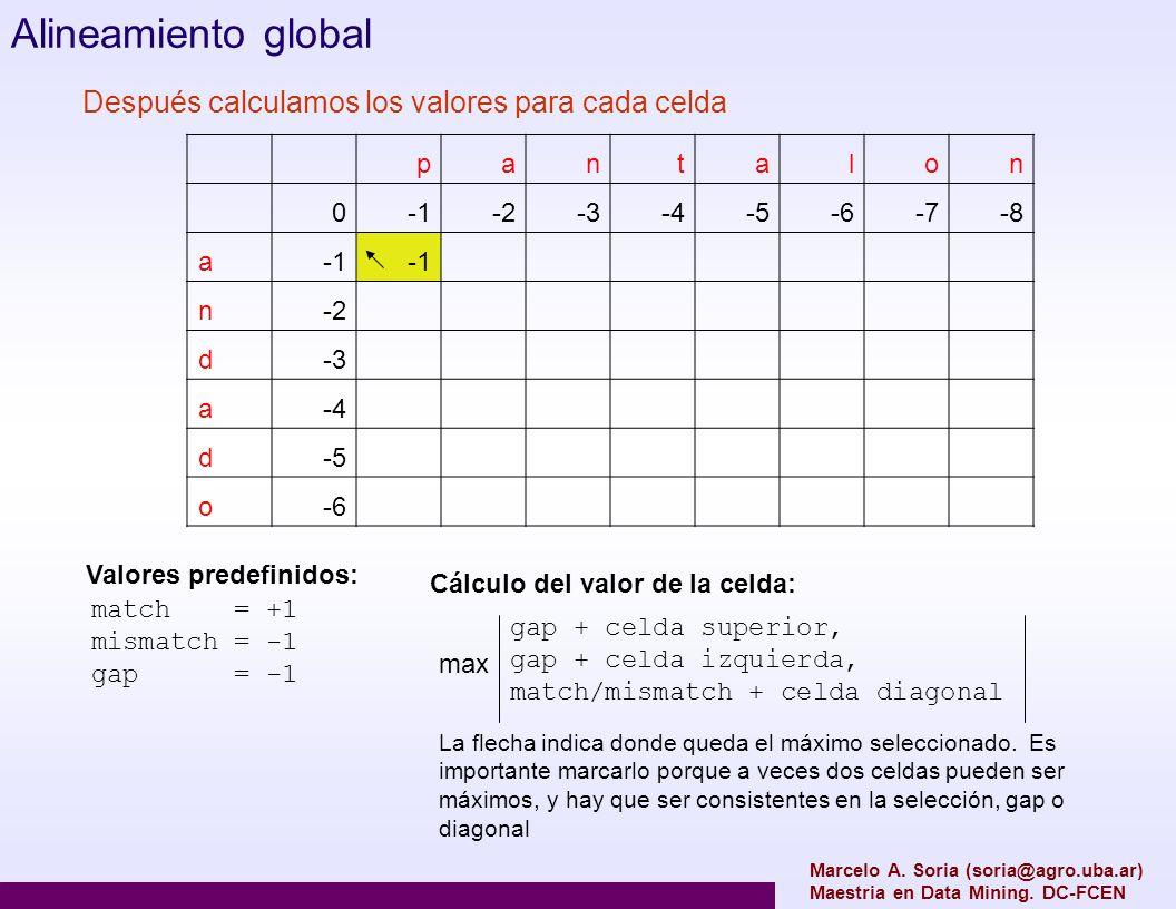 Alineamiento global Después calculamos los valores para cada celda p a