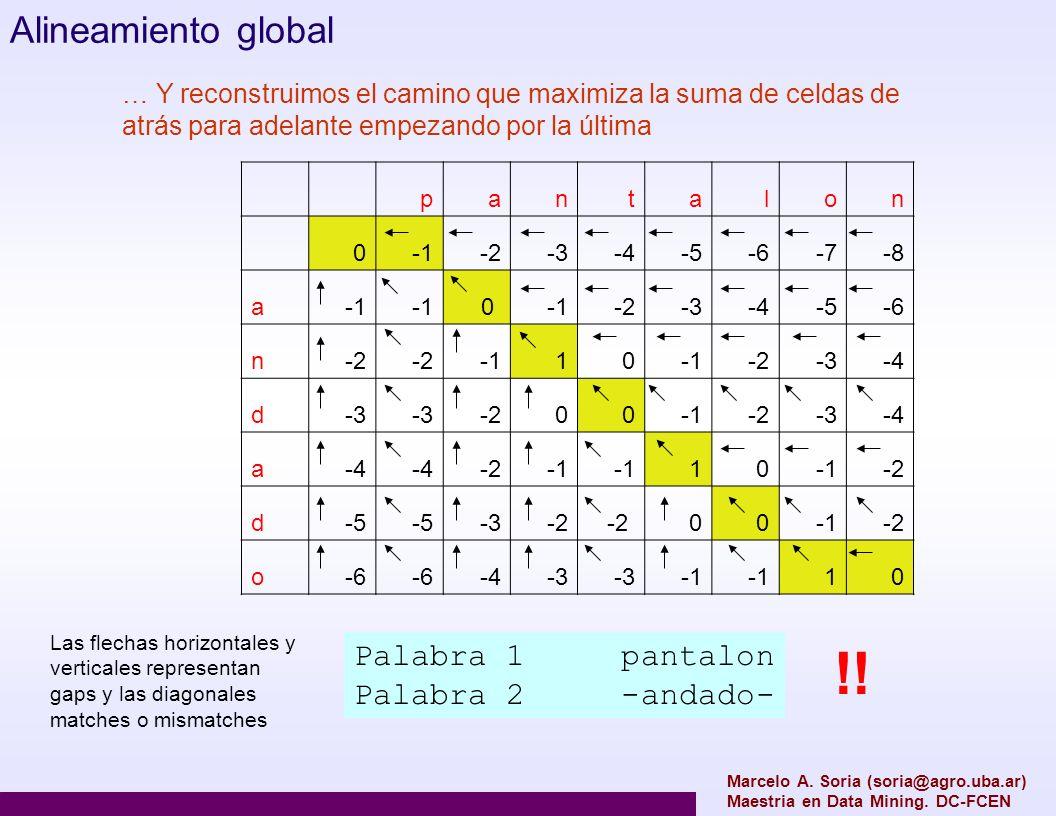 !! Alineamiento global Palabra 1 pantalon Palabra 2 -andado-