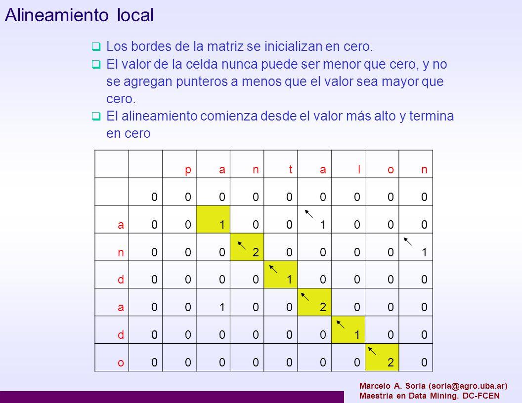 Alineamiento local Los bordes de la matriz se inicializan en cero.