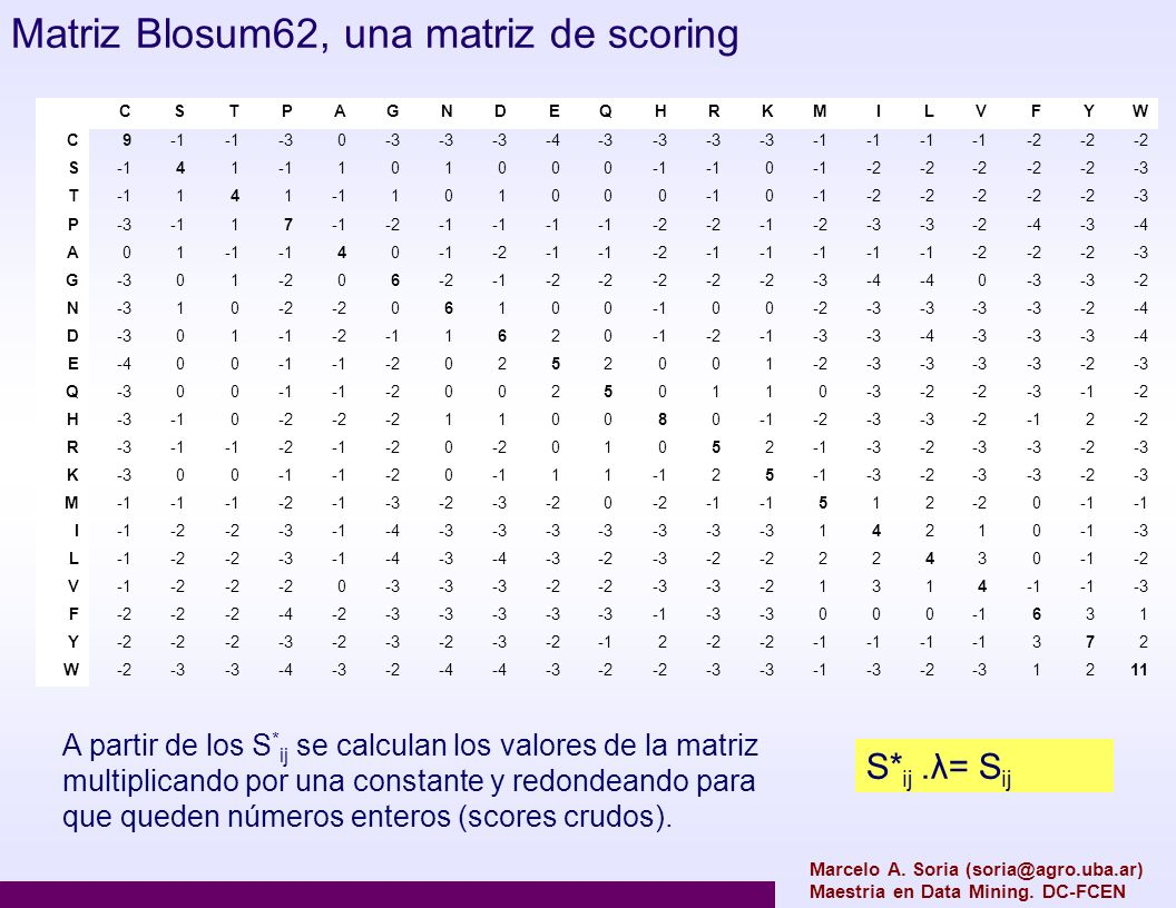 Matriz Blosum62, una matriz de scoring