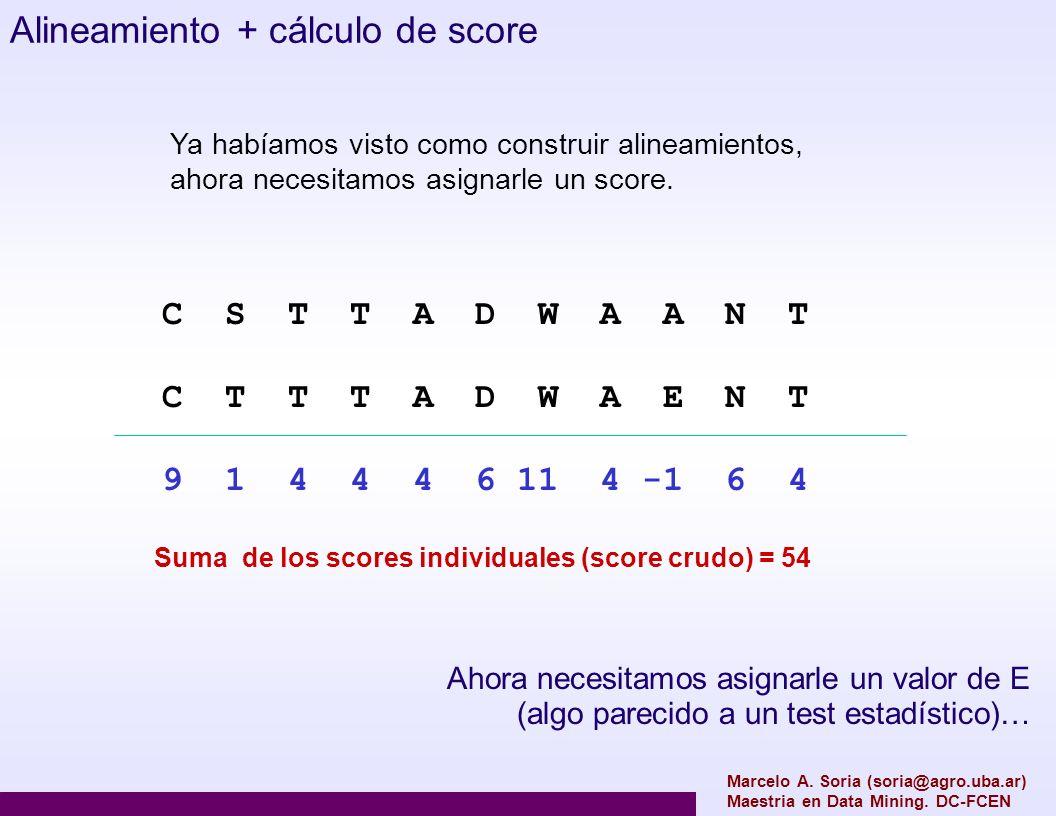 Alineamiento + cálculo de score