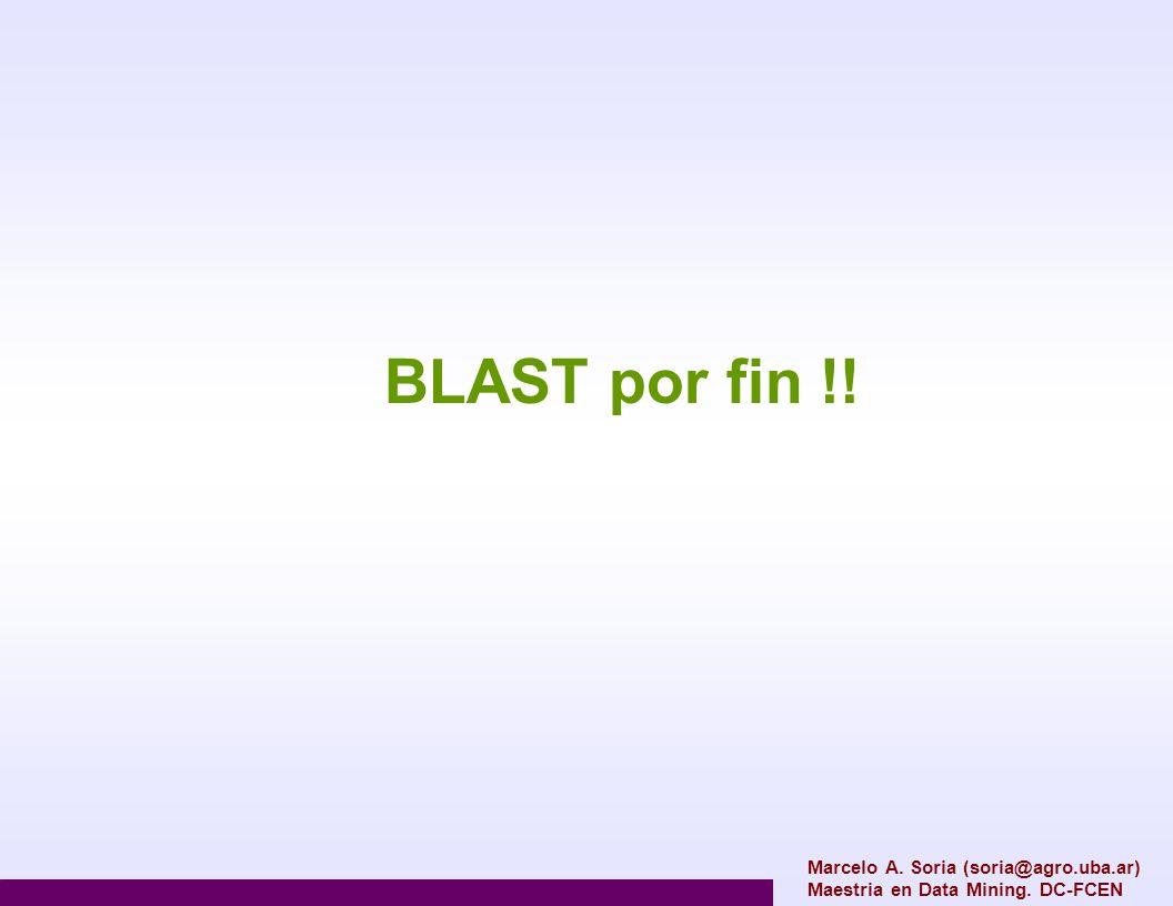 BLAST por fin !! Marcelo A. Soria (soria@agro.uba.ar)