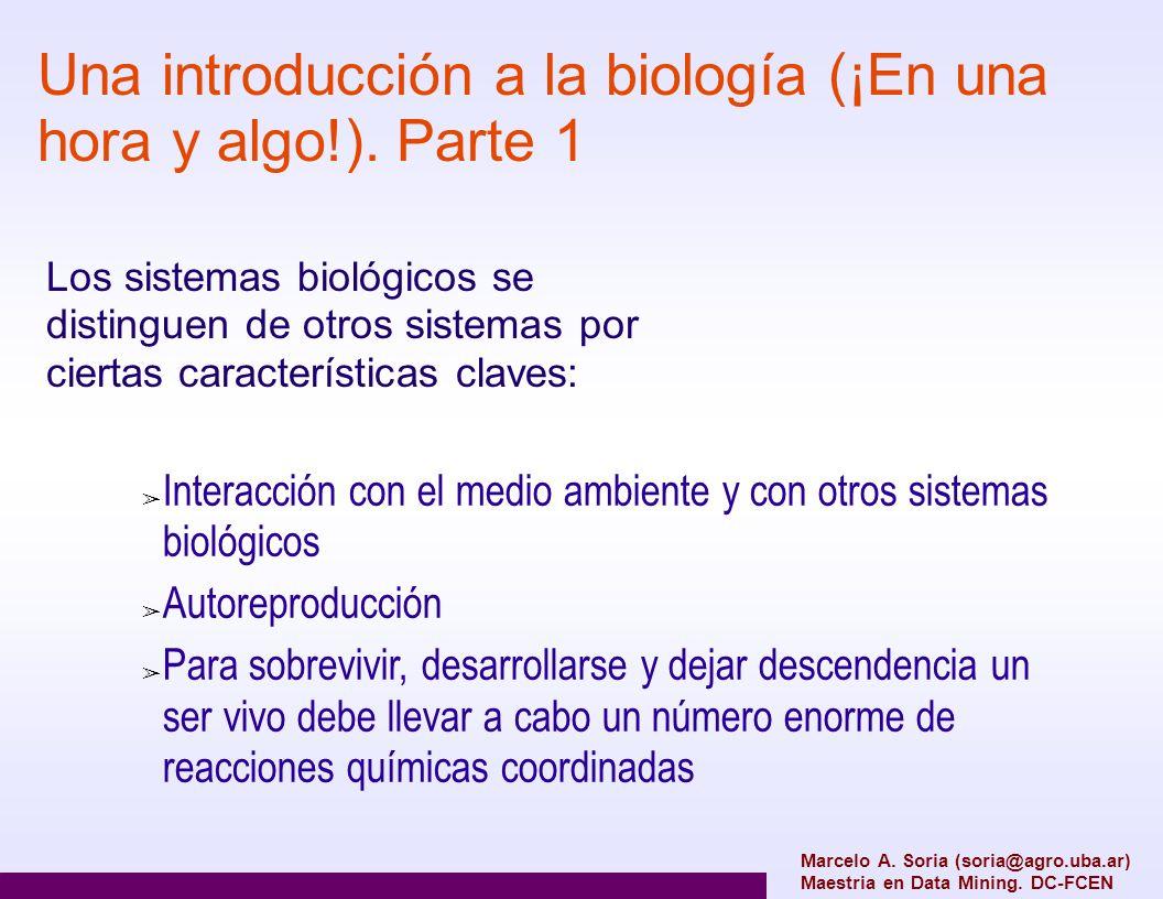 Una introducción a la biología (¡En una hora y algo!). Parte 1