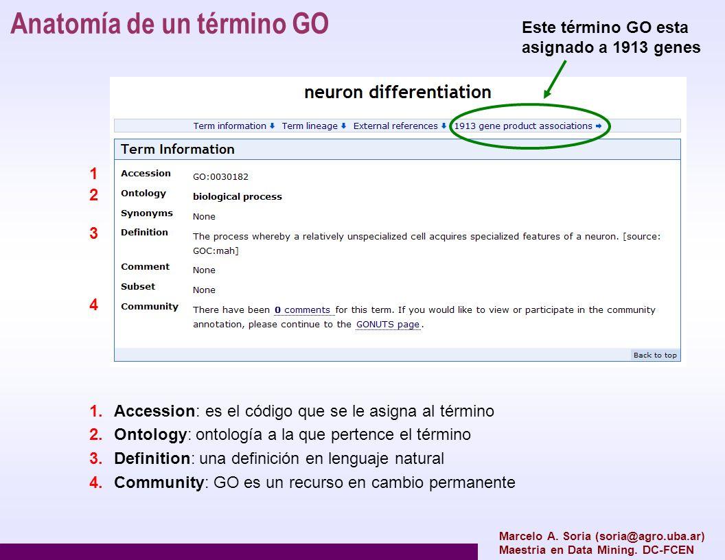 Anatomía de un término GO