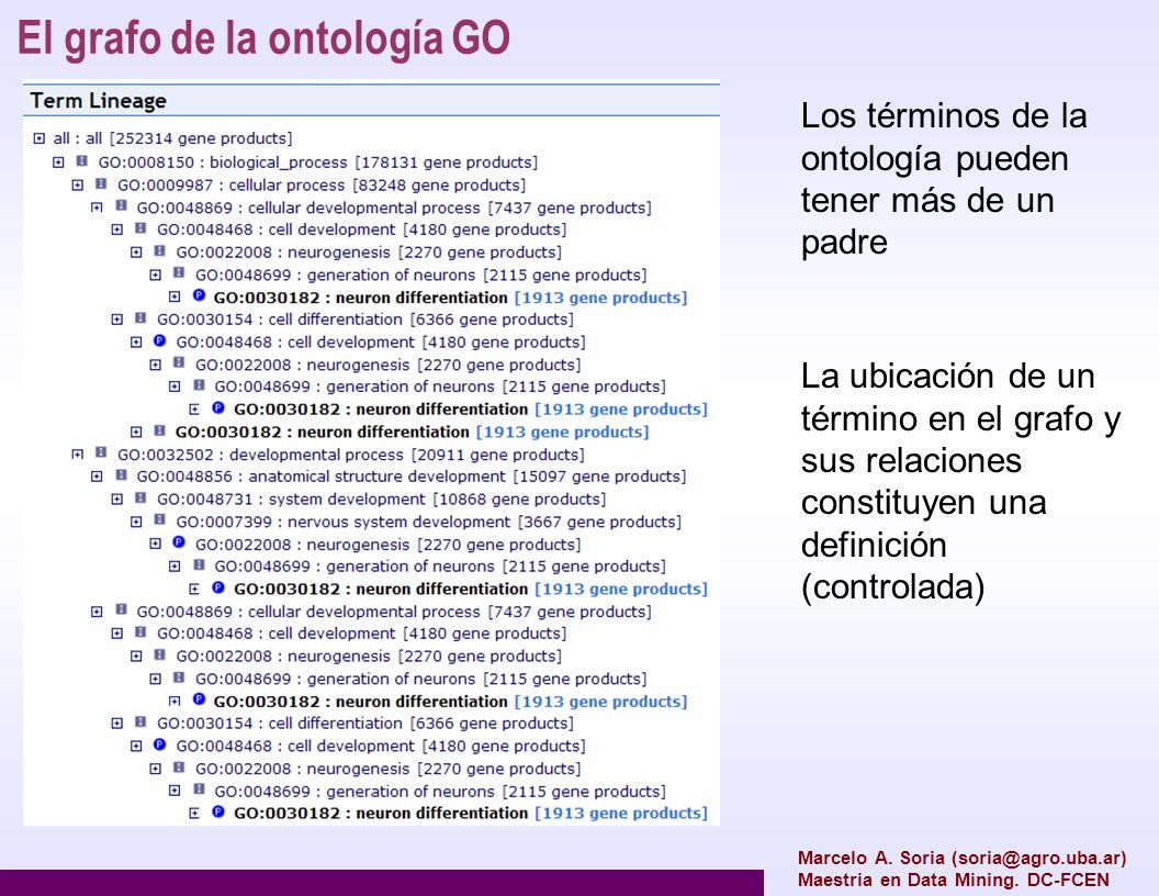 El grafo de la ontología GO