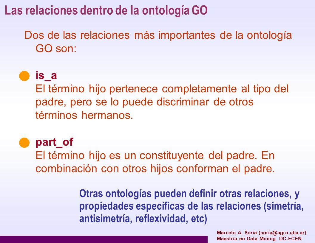 Las relaciones dentro de la ontología GO