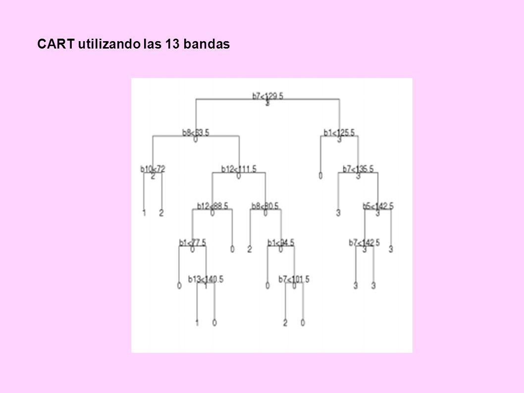 CART utilizando las 13 bandas