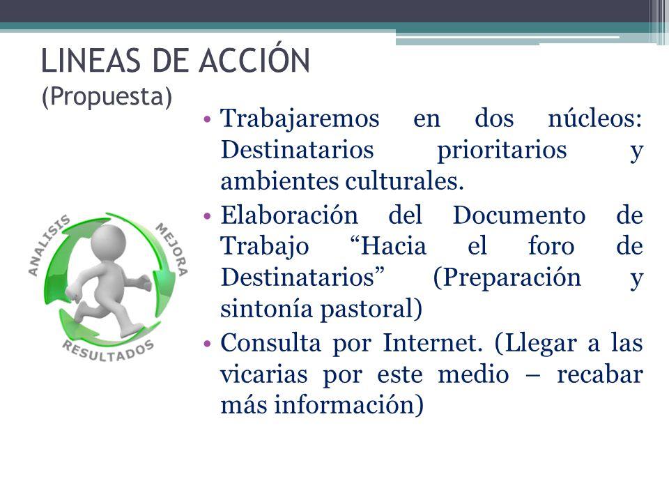 LINEAS DE ACCIÓN (Propuesta)
