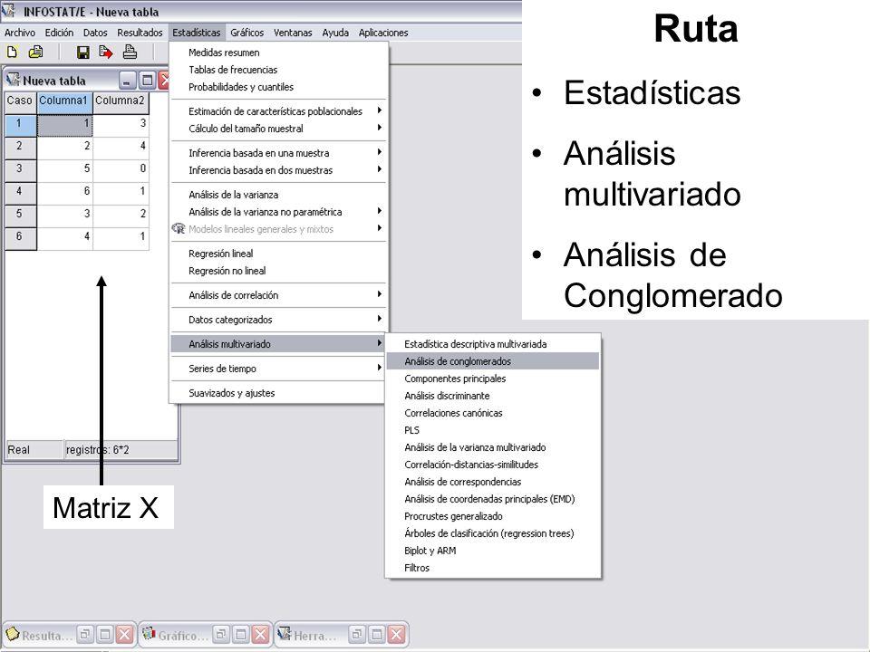 Ruta Estadísticas Análisis multivariado Análisis de Conglomerado