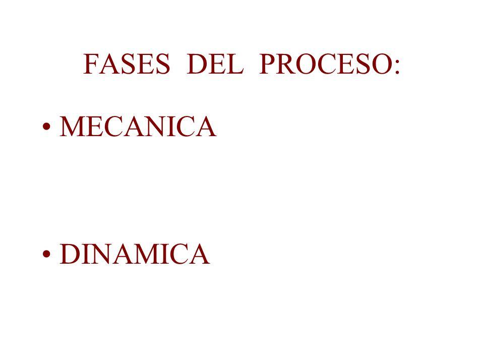 FASES DEL PROCESO: MECANICA DINAMICA