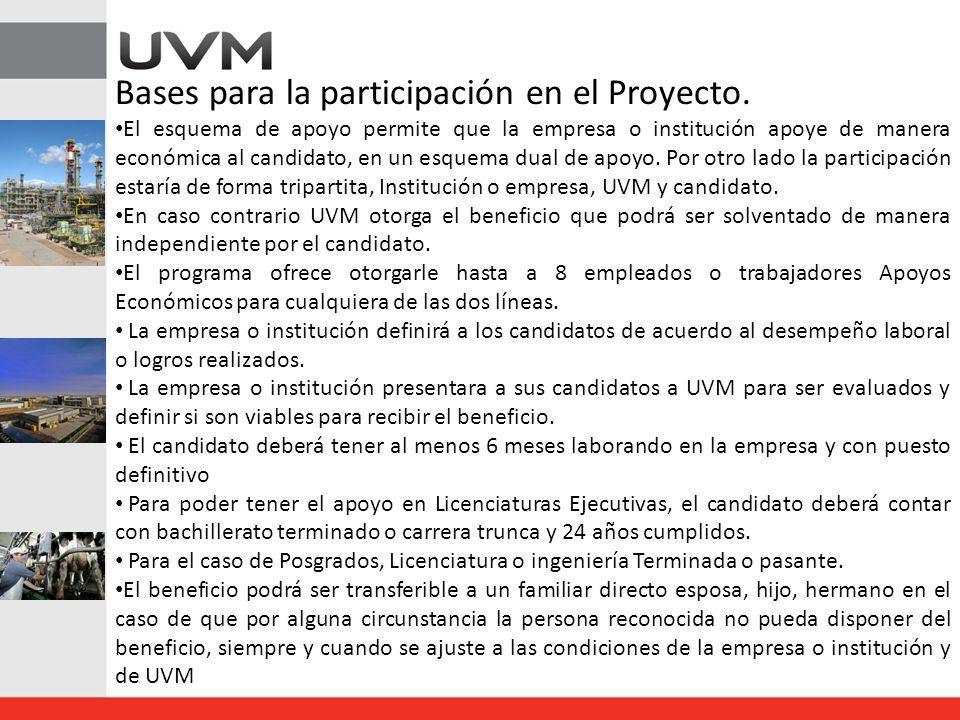 Bases para la participación en el Proyecto.