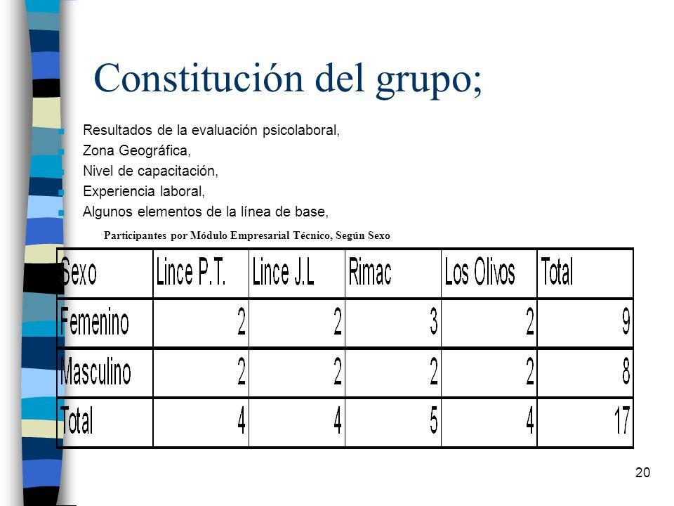 Constitución del grupo;