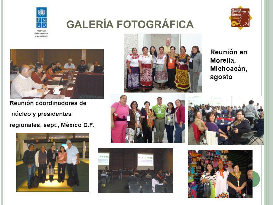 GALERÍA FOTOGRÁFICA Reunión en Morelia, Michoacán, agosto
