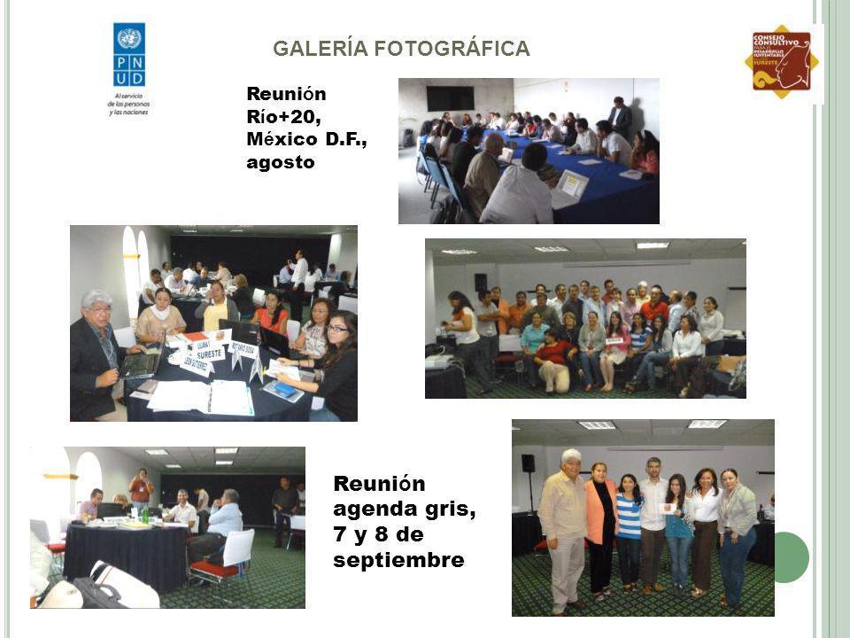 Reunión agenda gris, 7 y 8 de septiembre