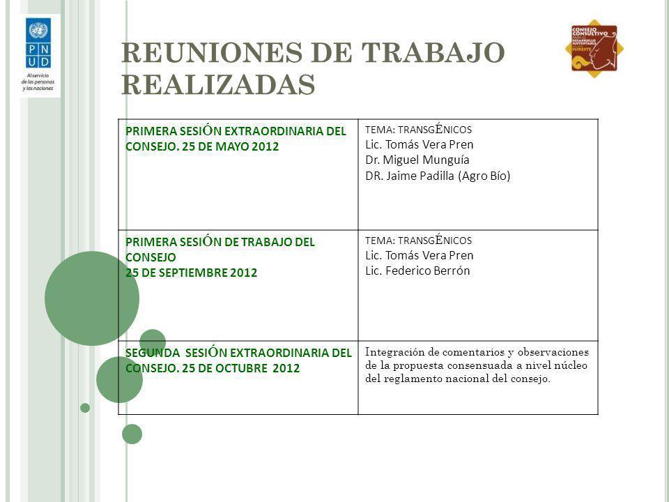 REUNIONES DE TRABAJO REALIZADAS