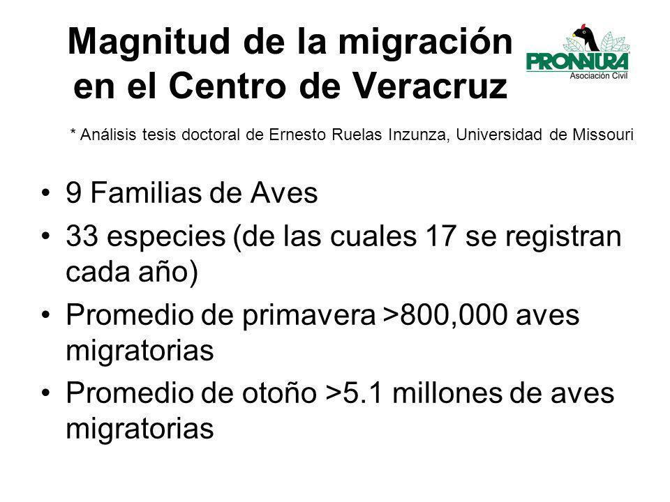 Magnitud de la migración en el Centro de Veracruz