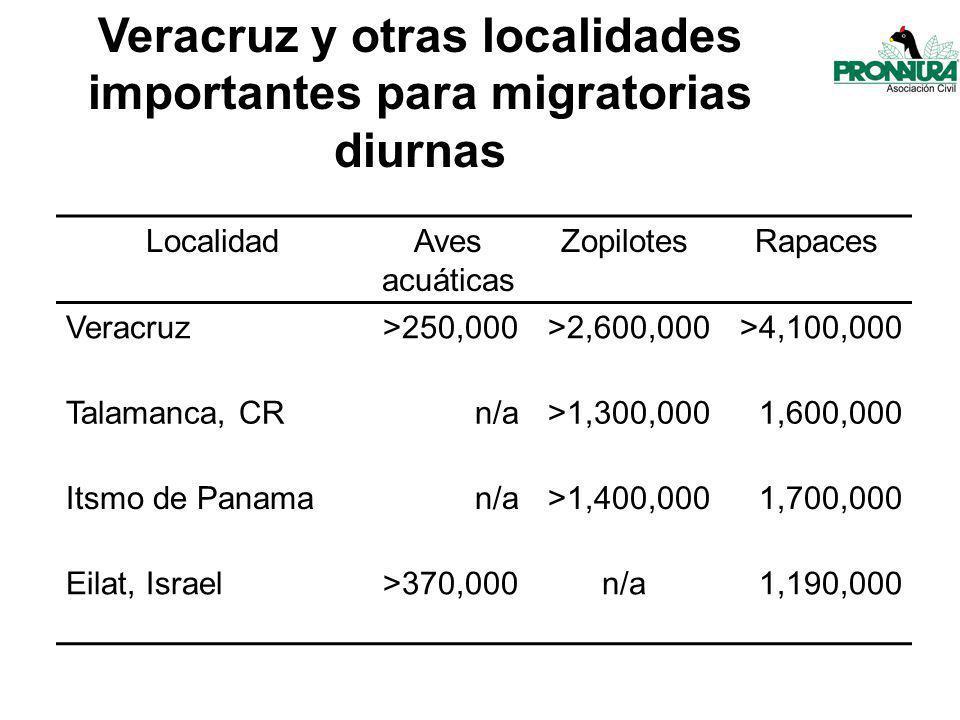 Veracruz y otras localidades importantes para migratorias diurnas