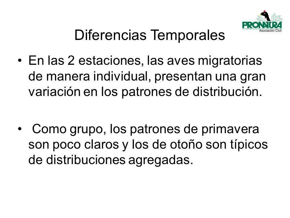 Diferencias Temporales