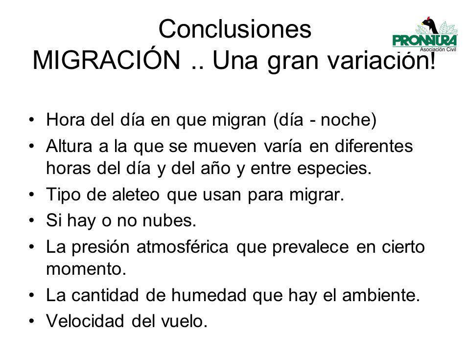 Conclusiones MIGRACIÓN .. Una gran variación!