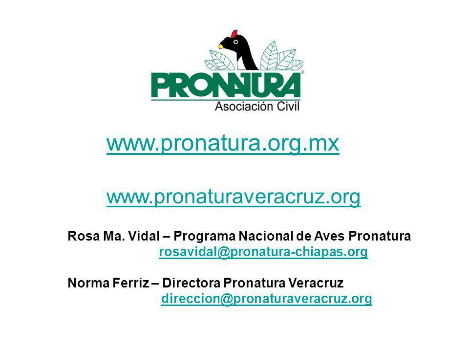 www.pronatura.org.mx www.pronaturaveracruz.org