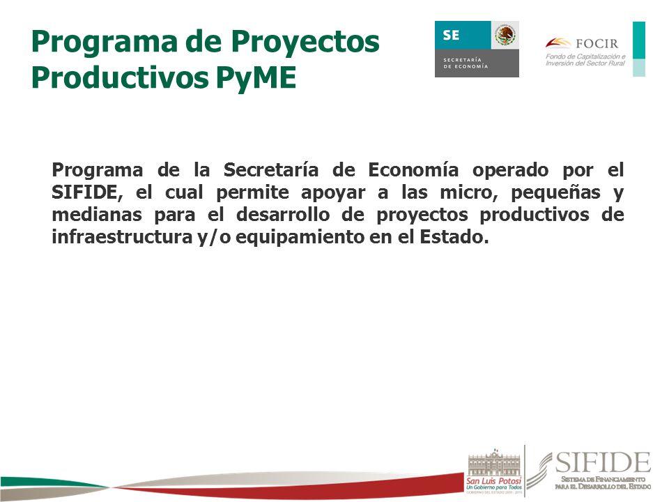 Programa de Proyectos Productivos PyME