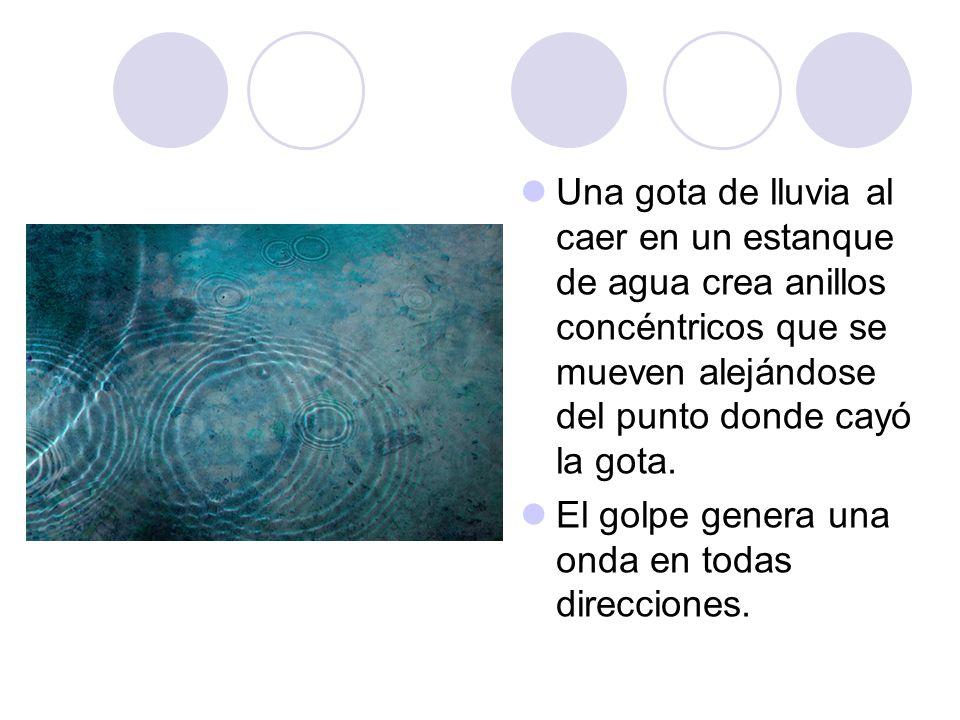Una gota de lluvia al caer en un estanque de agua crea anillos concéntricos que se mueven alejándose del punto donde cayó la gota.