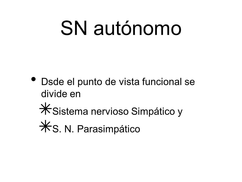 SN autónomo Dsde el punto de vista funcional se divide en