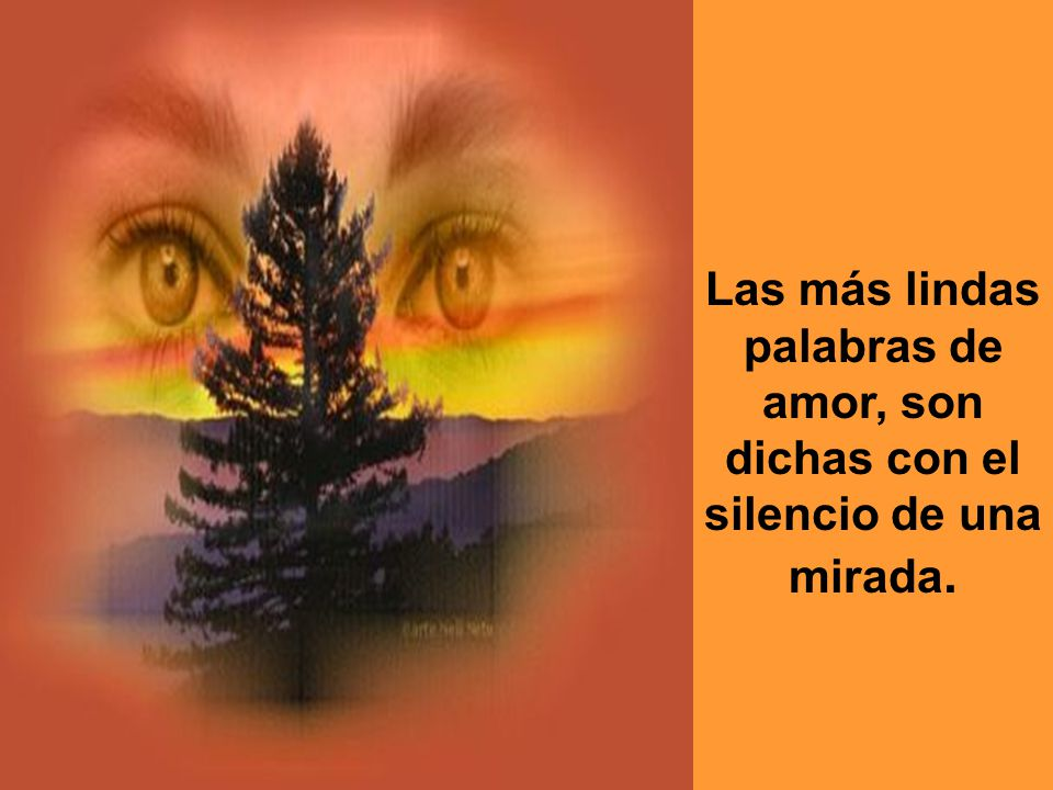 Las más lindas palabras de amor, son dichas con el silencio de una mirada.