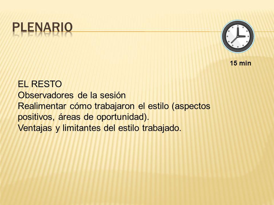 PLENARIO EL RESTO Observadores de la sesión
