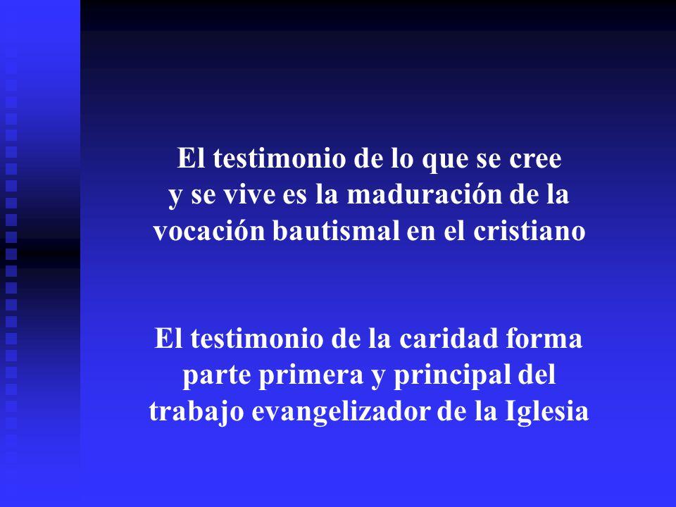 El testimonio de lo que se cree y se vive es la maduración de la vocación bautismal en el cristiano