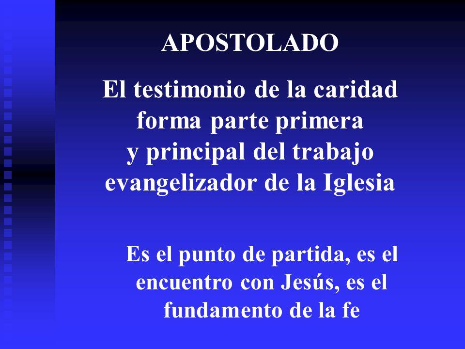 APOSTOLADO El testimonio de la caridad forma parte primera y principal del trabajo evangelizador de la Iglesia.