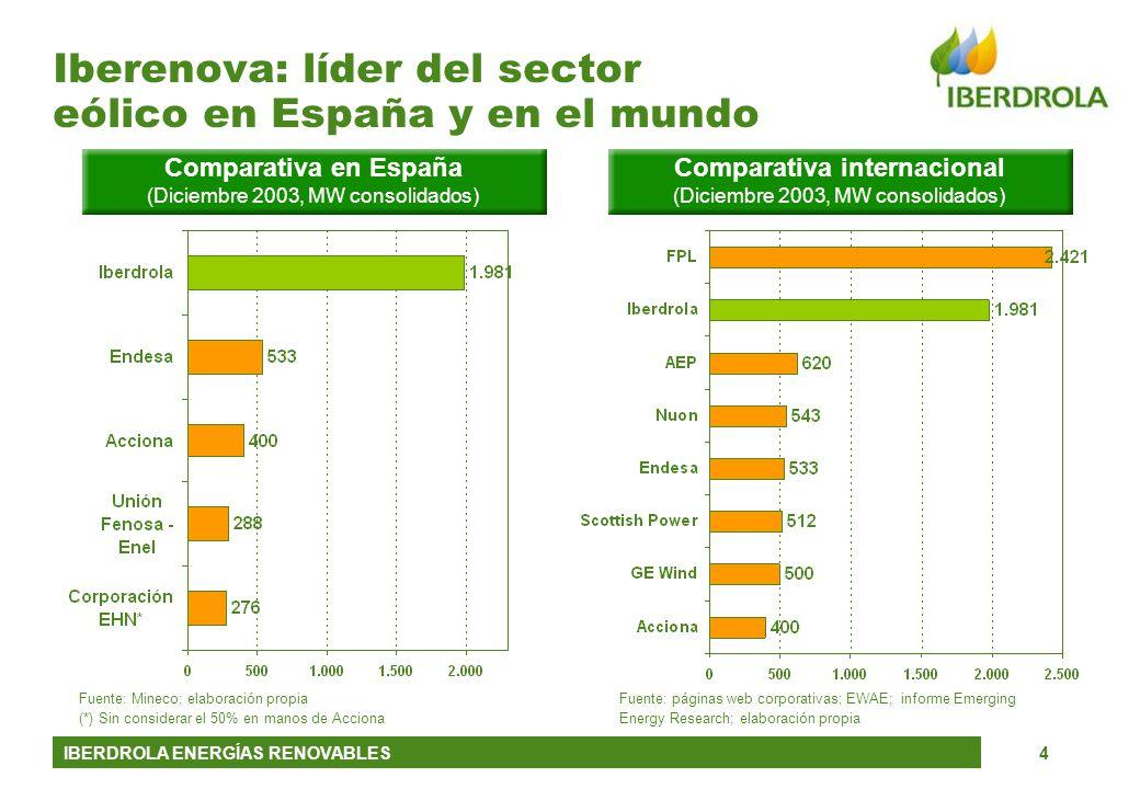 Iberenova: líder del sector eólico en España y en el mundo