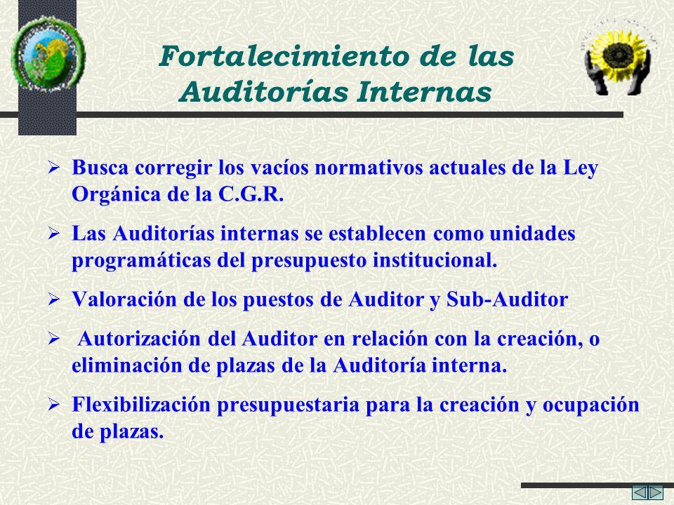Fortalecimiento de las Auditorías Internas