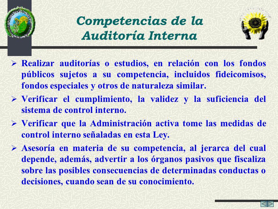 Competencias de la Auditoría Interna