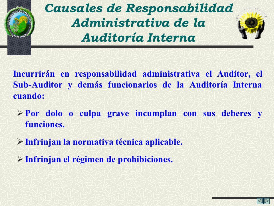 Causales de Responsabilidad Administrativa de la Auditoría Interna