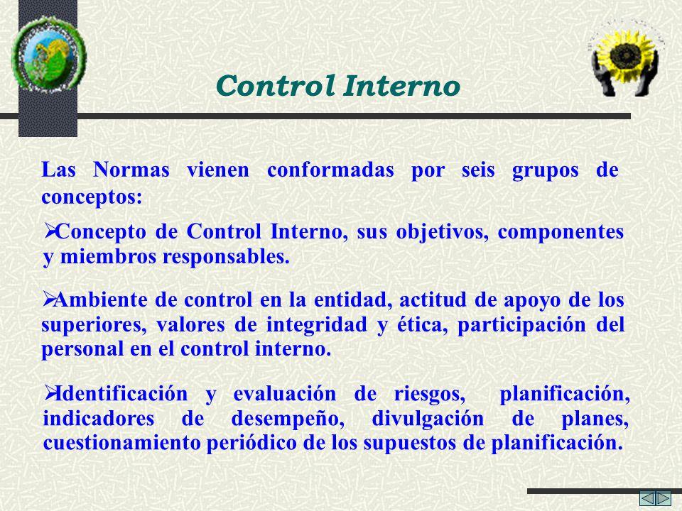 Control Interno Las Normas vienen conformadas por seis grupos de conceptos: