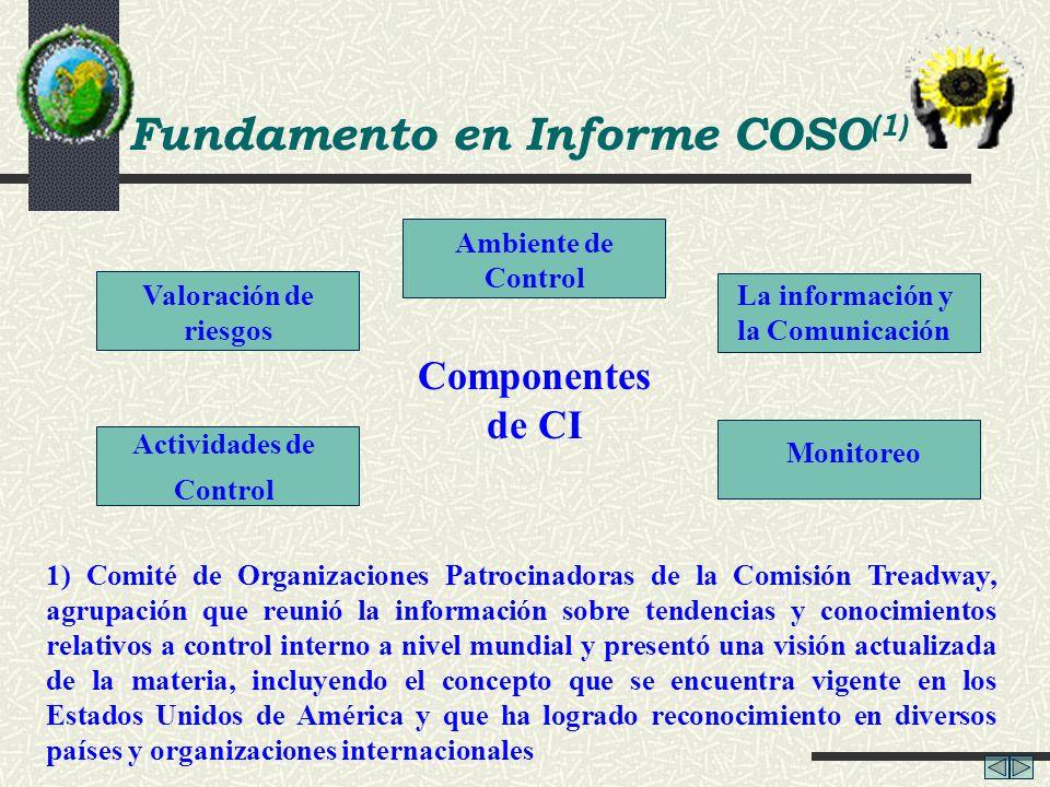 Fundamento en Informe COSO(1) Actividades de Control