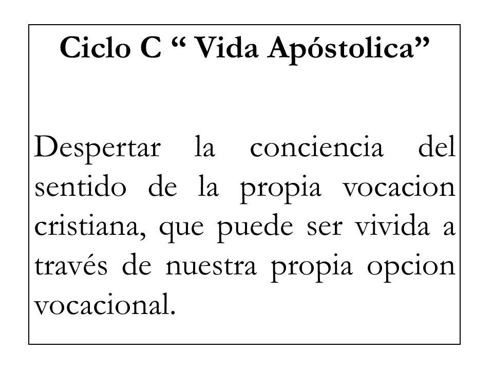 Ciclo C Vida Apóstolica