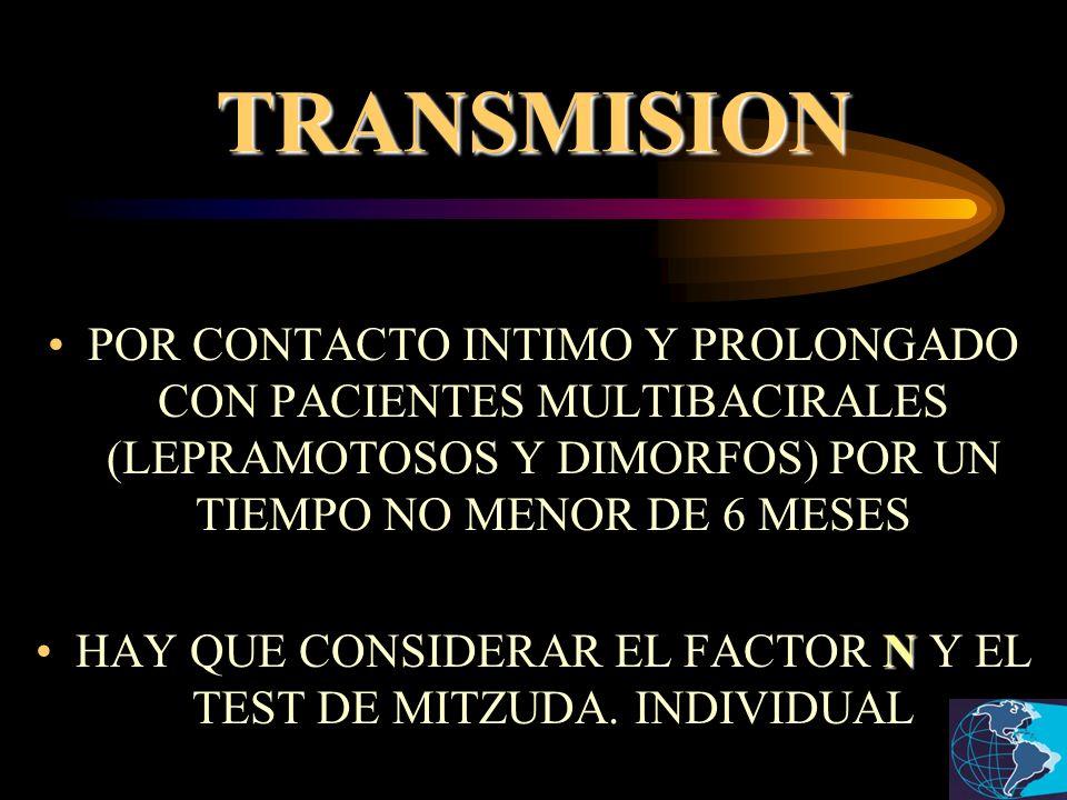 HAY QUE CONSIDERAR EL FACTOR N Y EL TEST DE MITZUDA. INDIVIDUAL