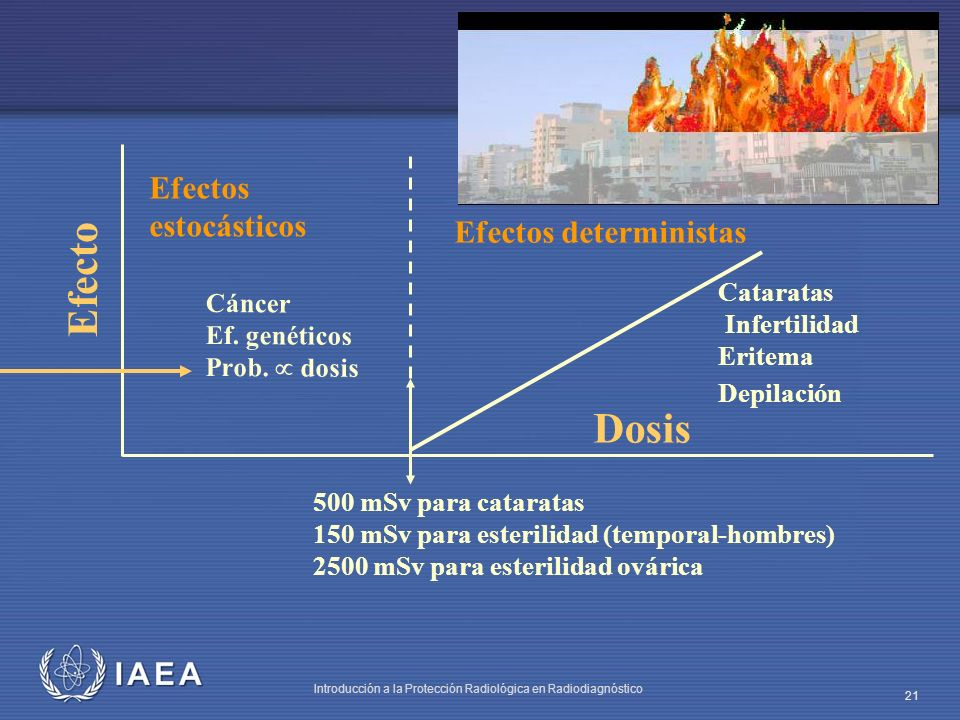 Efecto Dosis Efectos estocásticos Efectos deterministas Cataratas