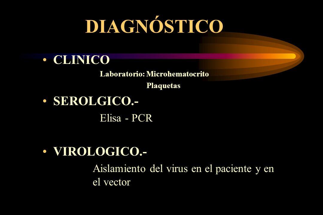 DIAGNÓSTICO CLINICO SEROLGICO.- VIROLOGICO.- Elisa - PCR