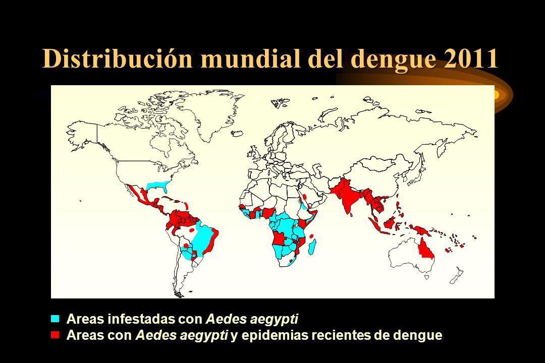 Distribución mundial del dengue 2011