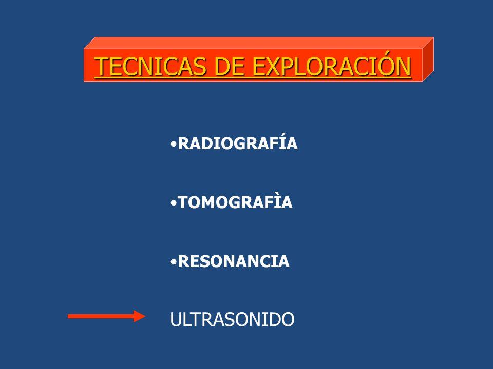 TECNICAS DE EXPLORACIÓN