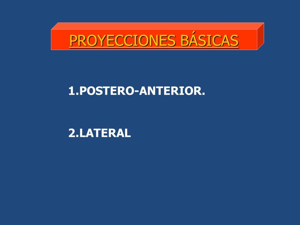 PROYECCIONES BÁSICAS POSTERO-ANTERIOR. LATERAL