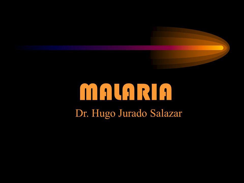 MALARIA Dr. Hugo Jurado Salazar