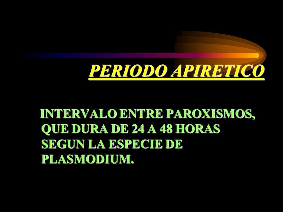 PERIODO APIRETICO INTERVALO ENTRE PAROXISMOS, QUE DURA DE 24 A 48 HORAS SEGUN LA ESPECIE DE PLASMODIUM.